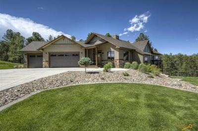 Rapid City Single Family Home For Sale: 9120 Ivory Cliffs Ln