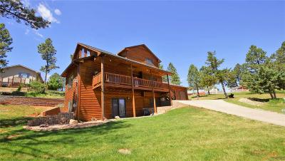 Rapid City Single Family Home For Sale: 4115 Farview Dr