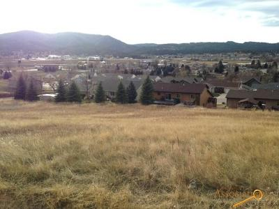 Sturgis Residential Lots & Land For Sale: Lot 1