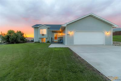 Rapid City Single Family Home For Sale: 1026 Park Hill Ct