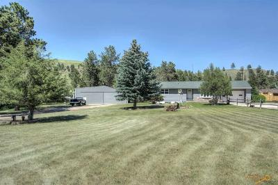 Rapid City Single Family Home For Sale: 6248 Blake Rd