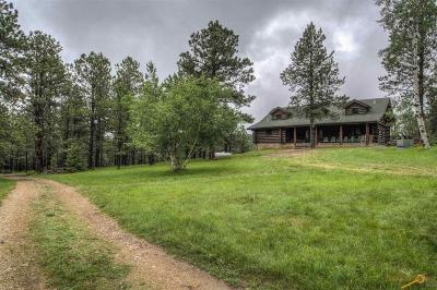 Deadwood Single Family Home For Sale: 12167