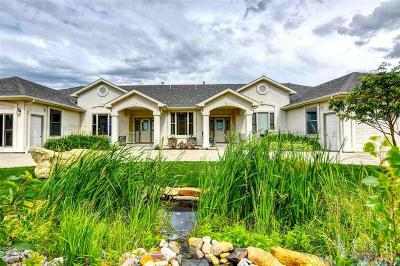 Whitewood Single Family Home For Sale: 20109