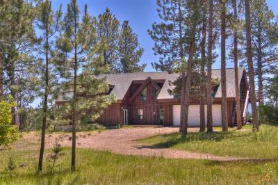 Sturgis Single Family Home For Sale: 20672