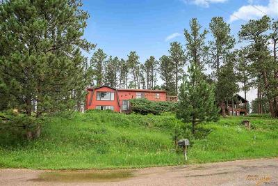 Rapid City Single Family Home For Sale: 2463 Carter Dr