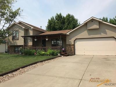 Rapid City Single Family Home For Sale: 4801 Johnston Dr