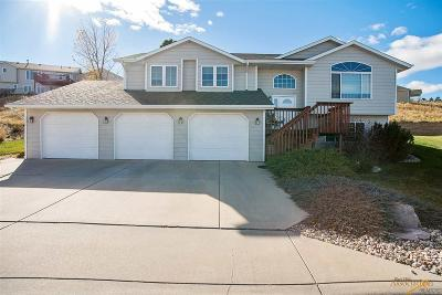 Rapid City Single Family Home For Sale: 3735 City View Dr