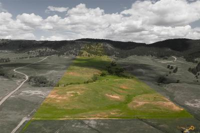 Residential Lots & Land For Sale: Tbd N Hwy 385