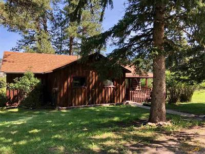 Hill City Single Family Home For Sale: 12496 Old Hill City Rd