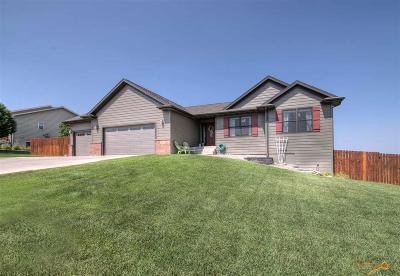 Rapid City Single Family Home For Sale: 524 Minnesota