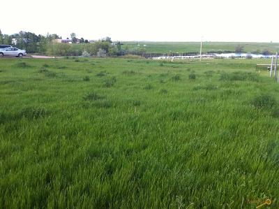 Residential Lots & Land For Sale: Damview