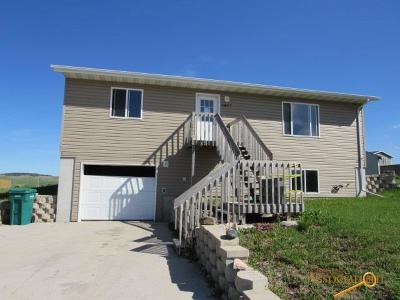 Single Family Home For Sale: 4823 Glacier Ct