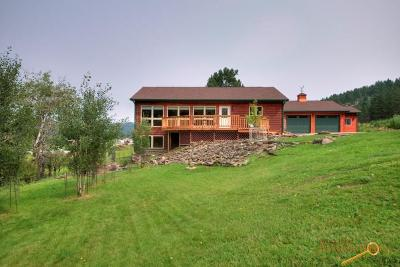 Hill City Single Family Home For Sale: 811 Bishop Mt Rd