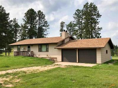 Custer Single Family Home For Sale: 12250