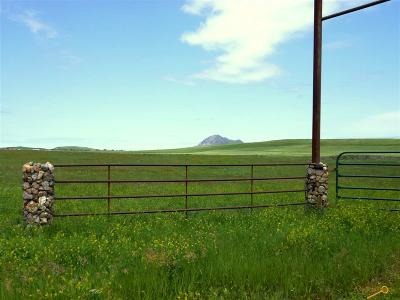 Sturgis Farm & Ranch For Sale: Tbd 207th