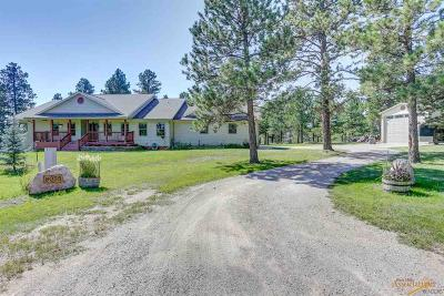 Rapid City Single Family Home For Sale: 8055 Stirrup Ct