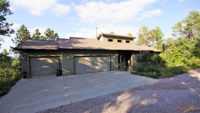 Rapid City Single Family Home For Sale: 23648 Wilderness Canyon Rd