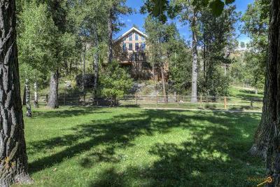 Rapid City Single Family Home For Sale: 13278 Klondike Rd