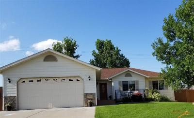 Rapid City Single Family Home For Sale: 560 Field View Dr