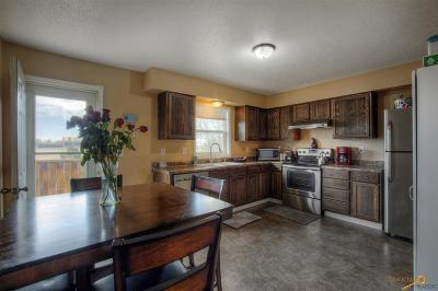 Rapid City Single Family Home For Sale: 1987 Galaxy Dr
