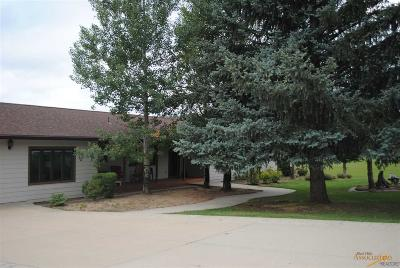 Rapid City Single Family Home For Sale: 10035 Pioneer Ave