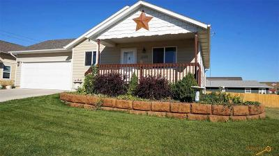 Rapid City Single Family Home For Sale: 3306 Champion Dr