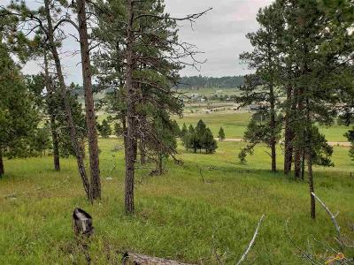 Sturgis Residential Lots & Land For Sale: Tbd Pleasant Valley Dr