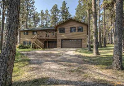 Rapid City Single Family Home For Sale: 13090 Timber Ln