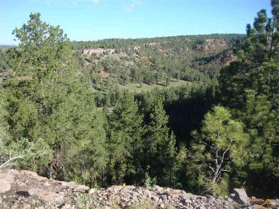 Residential Lots & Land For Sale: Lot 2 Red Canyon Rd