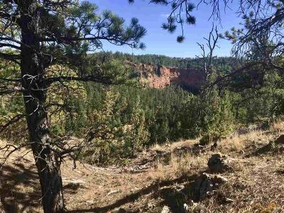 Residential Lots & Land For Sale: Tbd Red Canyon