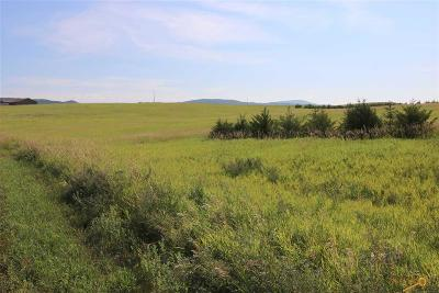 Sturgis Residential Lots & Land For Sale: 12685