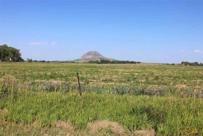 Sturgis Residential Lots & Land For Sale: 12695