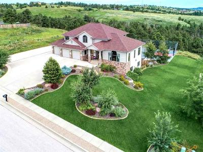 Rapid City Single Family Home For Sale: 4841 Enchanted Pines Dr
