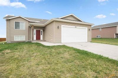 Rapid City, Hermosa, Box Elder, Black Hawk, Rapid Valley, Summerset, Piedmont, Piedmont Valley Single Family Home For Sale: 524 Freude Lane