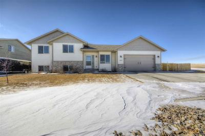 Rapid City Single Family Home For Sale: 4029 Sand Cherry Ln