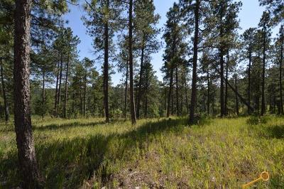 Residential Lots & Land For Sale: 23610 Wilderness Canyon Rd