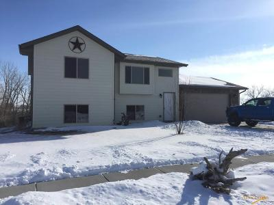 Rapid City Single Family Home For Sale: 3636 Knuckleduster Rd