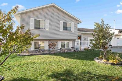 Rapid City, Hermosa, Box Elder, Black Hawk, Rapid Valley, Summerset, Piedmont, Piedmont Valley Single Family Home For Sale: 133 Soldier Field Ct