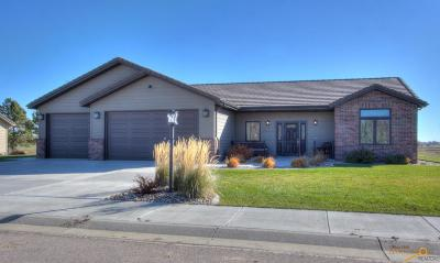 Rapid City Single Family Home For Sale: 3817 Padre Dr