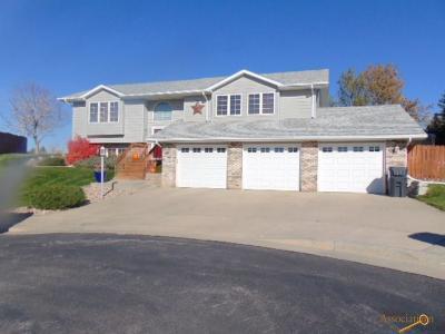 Rapid City Single Family Home For Sale: 2910 Princeton Ct