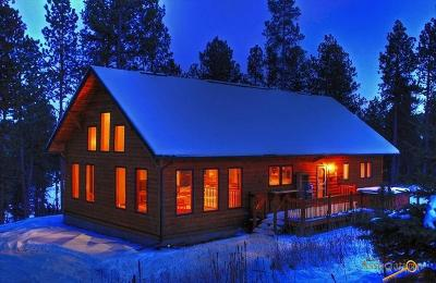 Nemo Single Family Home For Sale: 21851 Shiprock Rd