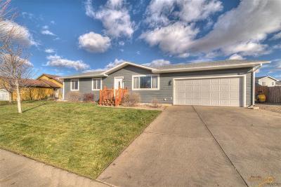 Rapid City Single Family Home For Sale: 744 Lion Dr