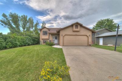 Rapid City Single Family Home For Sale: 3950 Winfield Ct