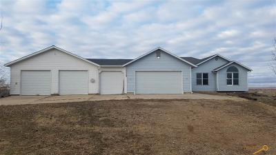 Single Family Home For Sale: 11052