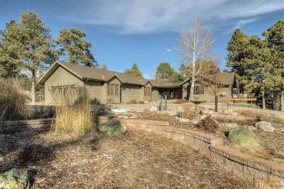 Rapid City Single Family Home For Sale: 5980 Wildwood Dr