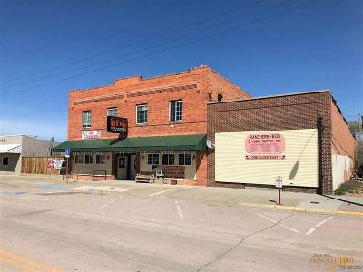 Commercial For Sale: 315 2nd Ave