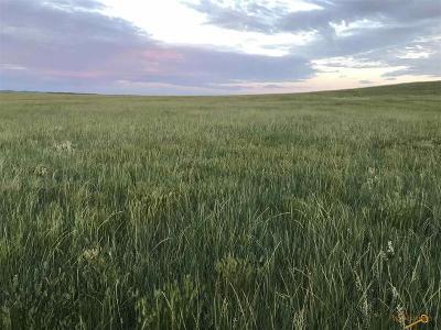 Farm & Ranch For Sale: Tbd Hwy 44