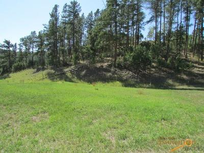 Residential Lots & Land For Sale: Lot B Of Lot 4 Granite Point Ct