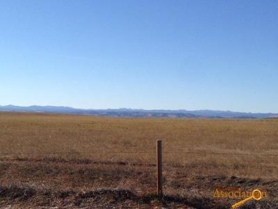Rapid City Farm & Ranch For Sale: Tbd Radar Hill Rd