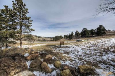 Rapid City Residential Lots & Land For Sale: 1501 Pevans Pkway
